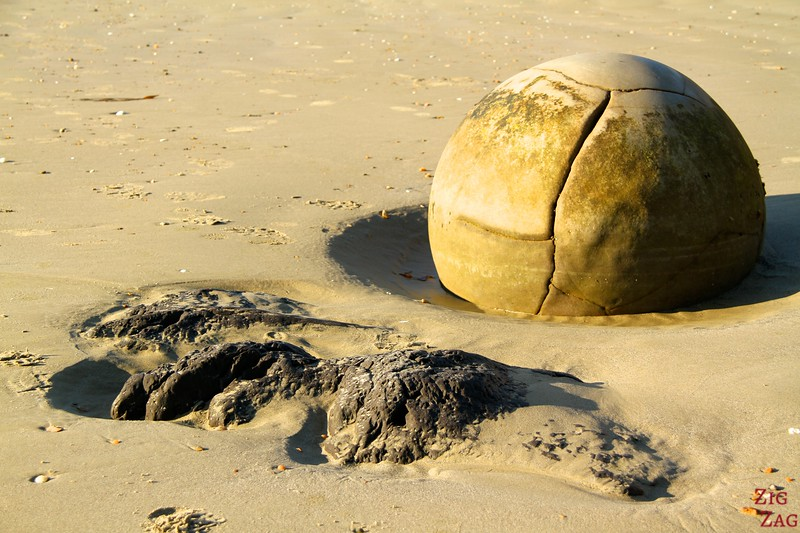 Moeraki boulders New Zealand photo 2
