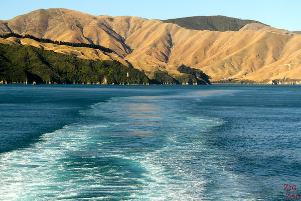 Ferry , Malborough Sound, New Zealand photo 2