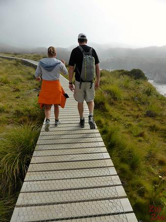 Easy hike to Hooker glacier lake - boardwalk