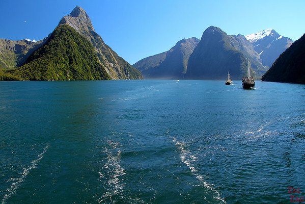 Cruising Milford Sound, New Zealand Photo 2
