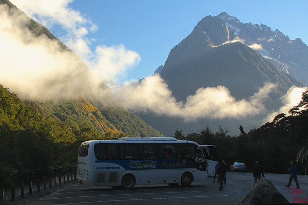 Bus of flying kiwi tour 1