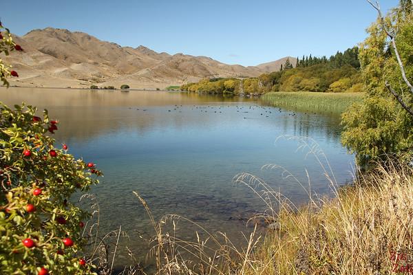 Lake Benmore, New Zealand photo 2