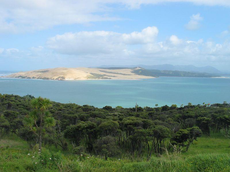View of Opononi