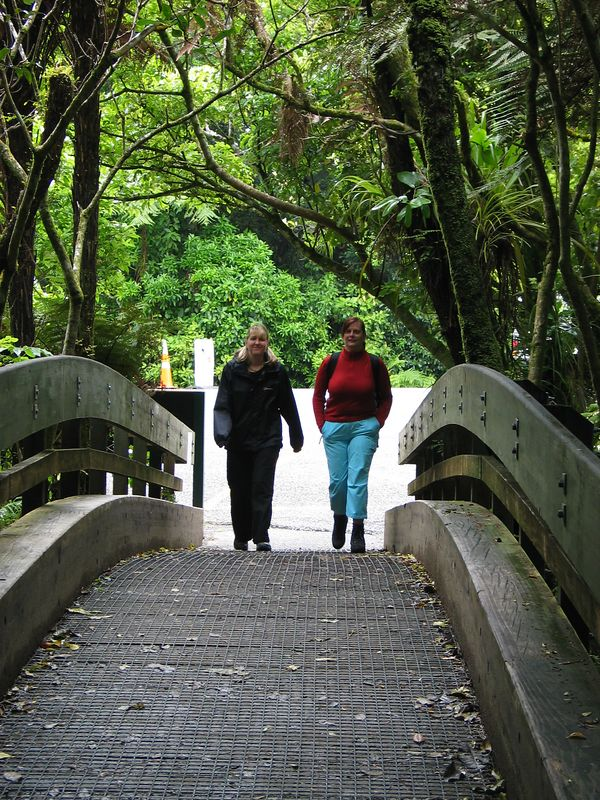 Amanda and Lynn go down to the woods today in search of a big surprise...