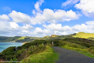 Arai-Te-Uru Recreation Reserve
