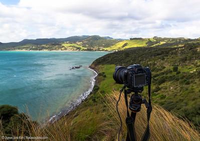 Photographying Opononi at Arai-Te-Uru Recreation Reserve
