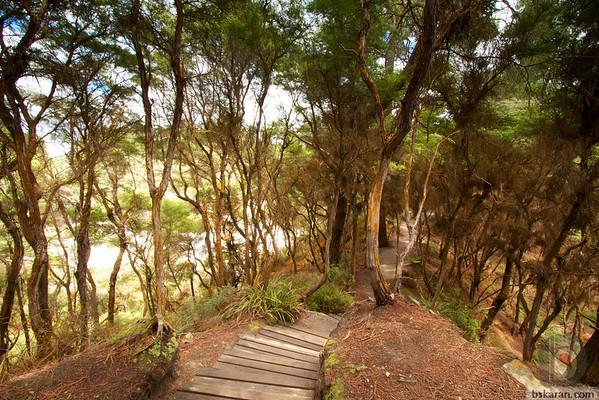 Rotorua wai-o-tapu - thermal wonderland : New zealand