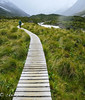 Footpath<br /> Aoraki Mt.Cook Natl. Park, South Island