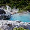 Rotorua Te Puia Pools