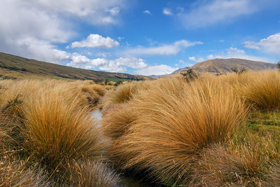 on the hike to Mt. Sunday (Edoras)