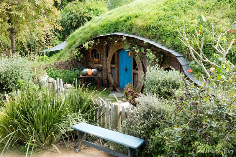 New Zealand-04509