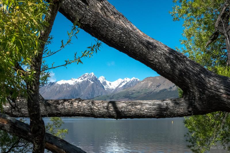 New Zealand-03451