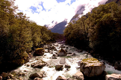 Stream- Milford Sound, New Zealand
