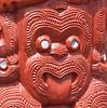 Whakarewarewa 4
