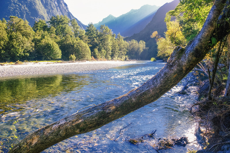 Clinton River scene - the Milford Track