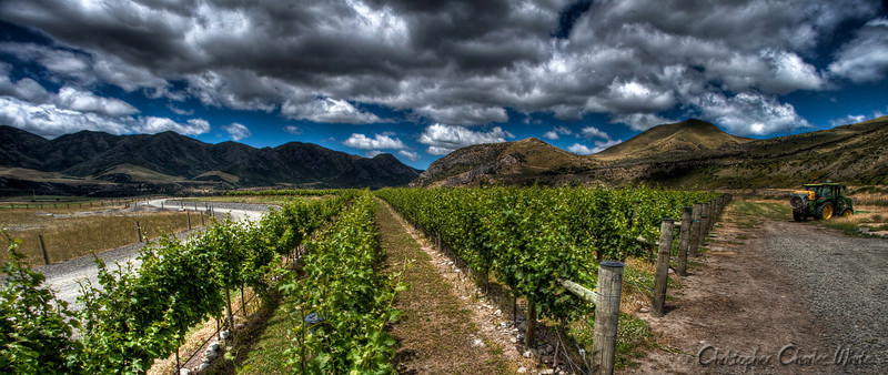 New Zealand Winery HDR