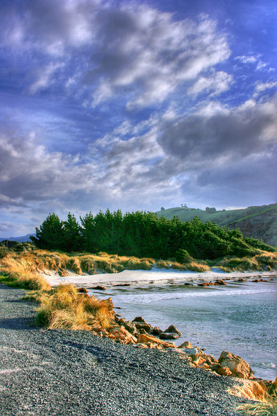 Aramoana Beach, New Zealand