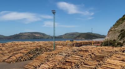Lumber, Port Chalmers Harbor