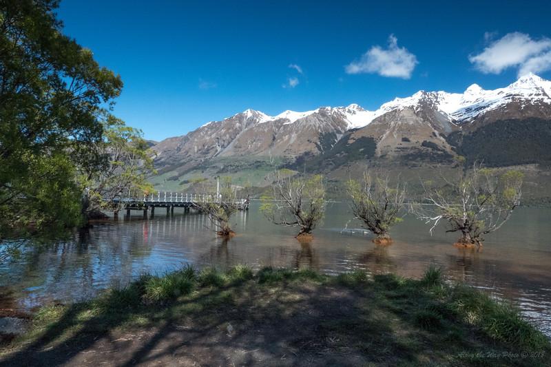 New Zealand-03463