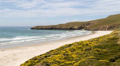 Dunedin Area Beach