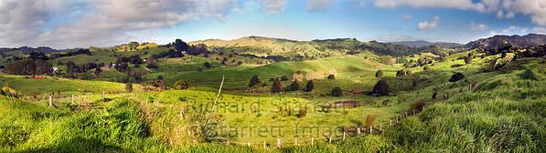 Rolling Coromandel countryside