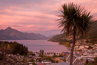 Sunrise over Queenstown, Walter Peak, and Lake Wakatipu, with a cabbage tree in the foreground.