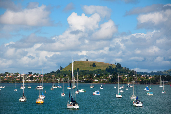 Suburb of Auckland on the way to Waiheke Island.