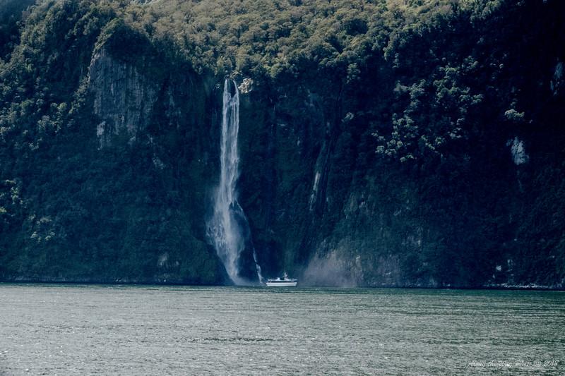 New Zealand-3272