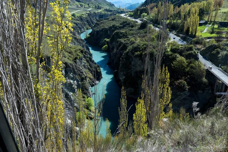 New Zealand-03522