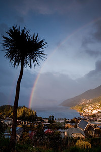 Rainbow over Queenstown. The tree on the left is a cabbage tree.
