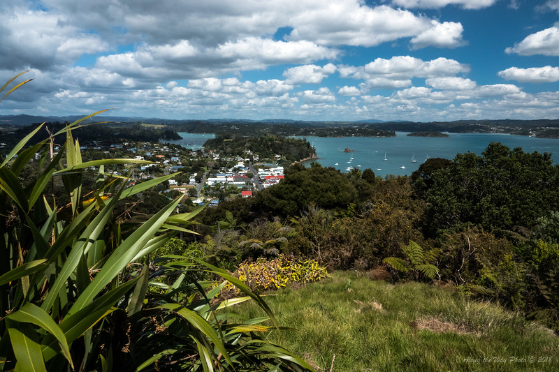 New Zealand-4365