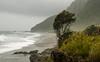 West Coast, South Island
