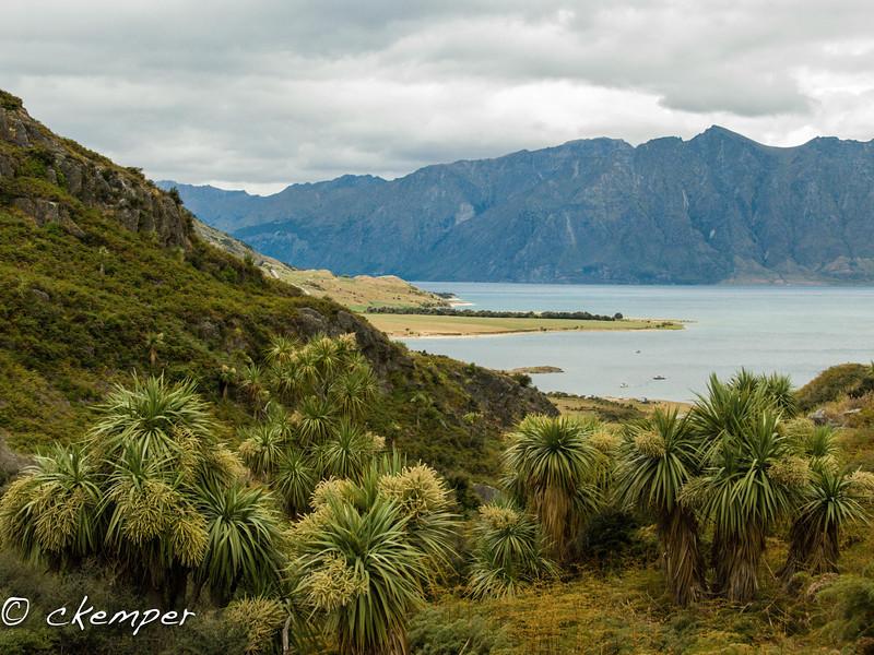 Lake Hawea, South Island