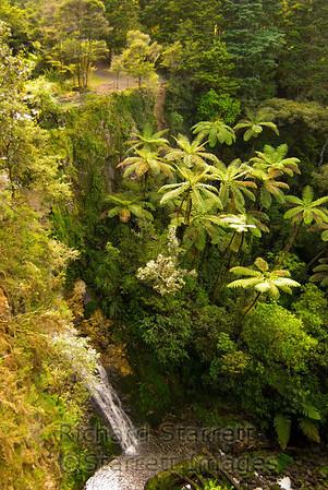 Waterfall near Whangarei