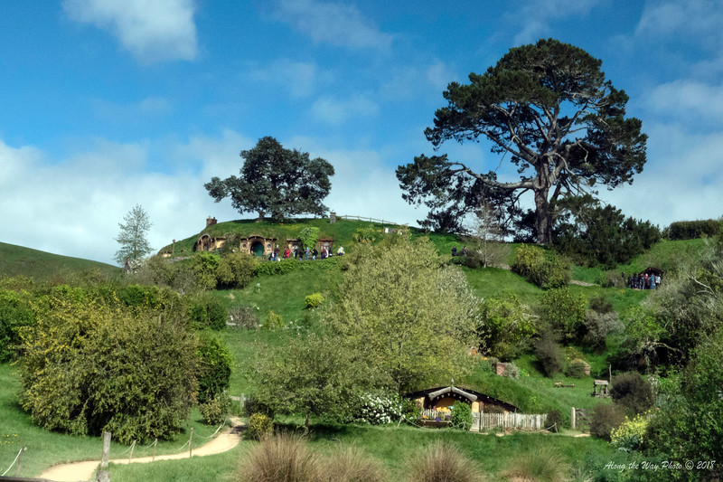 New Zealand-04522