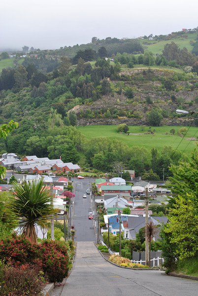 Baldwin Street, Dunedin--steepest in the world