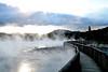 Steamy lake, Rotorua