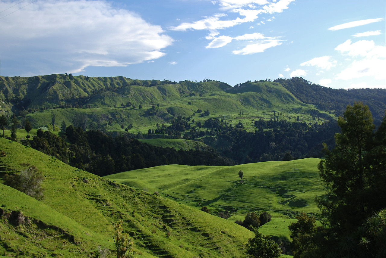 Wairoa - Gisborne inland road