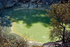 Pea green mineral pond