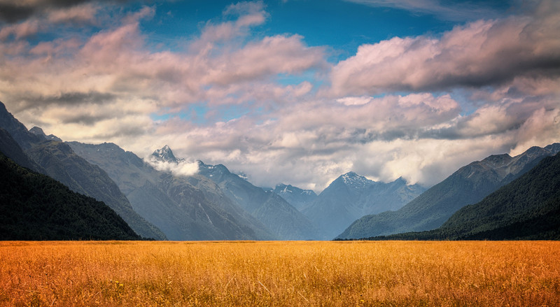 Fiordland National Park, Grassy fields on the road to Milford Sound.  Te Anau, New Zealand