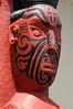 Whakarewarewa 5