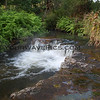 Kerosene Creek near Lake Taupo - natural hot springs - just lay back and relax in paradise!
