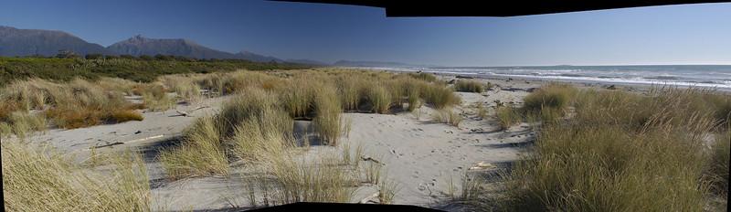 beach at haast, west coast south island