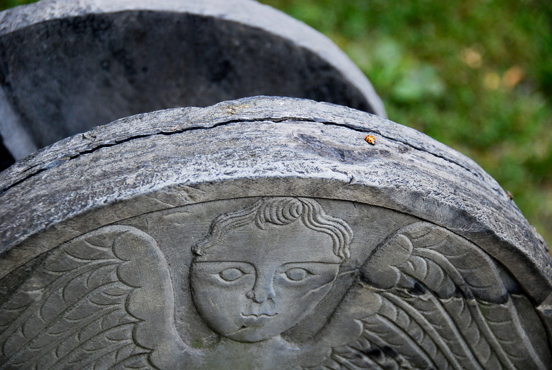 Detail on one of the gravestones at the Granary Burying Ground. Also, a ladybug.
