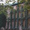 Building of Princeton Univ - love the ivy on this one!