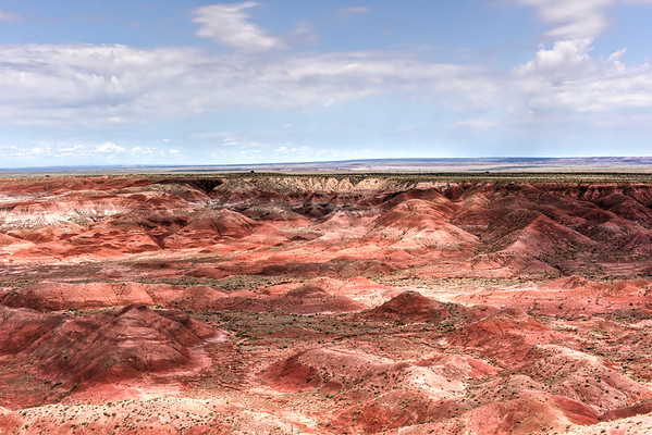 Tiponi Point - Petrified Forest National Park