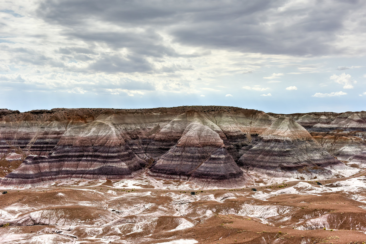 Blue Mesa - Petrified Forest National Park