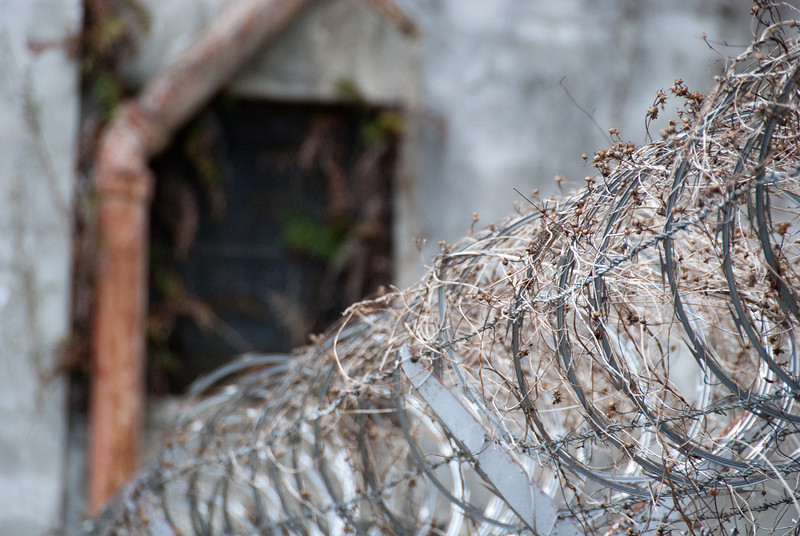 """<span id=""""title"""">Abandoned Power Plant</span> <em>New Orleans</em> Unkempt razor wire. I'd be curious to see what it's like in Summer when the vine isn't dormant."""