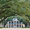 "<span id=""title"">Oak Alley</span> <em>Oak Alley Plantation</em> Here's the money shot. The alley of oaks extends all the way from the house to the road, about 1000 ft (300 m) away. No one knows who planted the oaks - they predate the house."