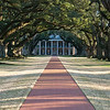"<span id=""title"">Oak Alley, with Sun</span> <em>Oak Alley Plantation</em> The sun peeked out a little for this shot. The current owners put the brick walkway in. A previous owner had cattle grazing here."
